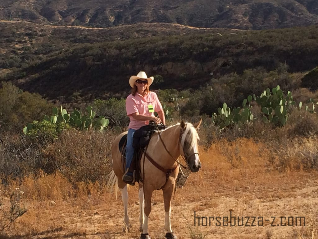 Ava, the Golden Country Cowgirl, or her horse Dancer