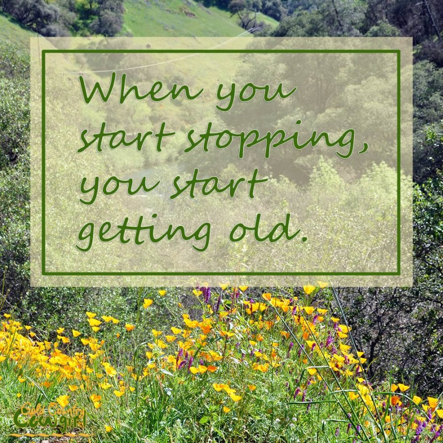 When you start stopping, you start getting old. Golden Country Cowgirl slogan and tagline.