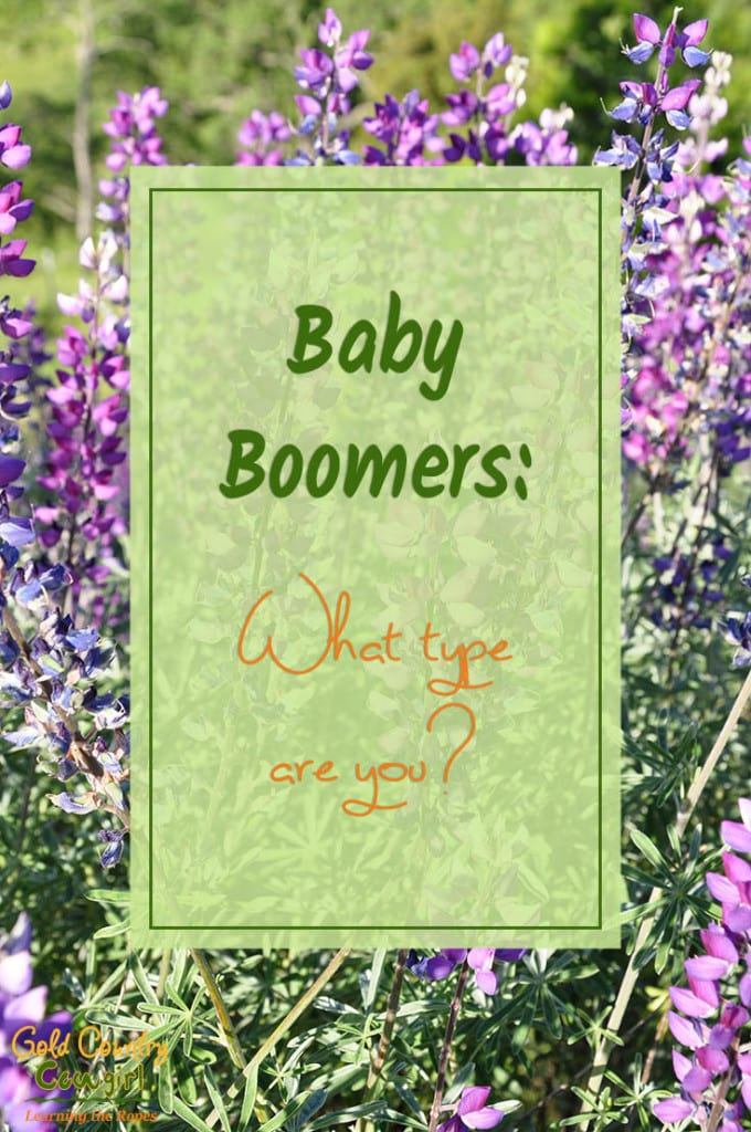 Baby Boomers: What type are you? - photo of lavendar in bloom - Baby boomers seem to fall into one of two categories. Either you have decided to live or you have decided to begin dying. Whoa, what do I mean by that?