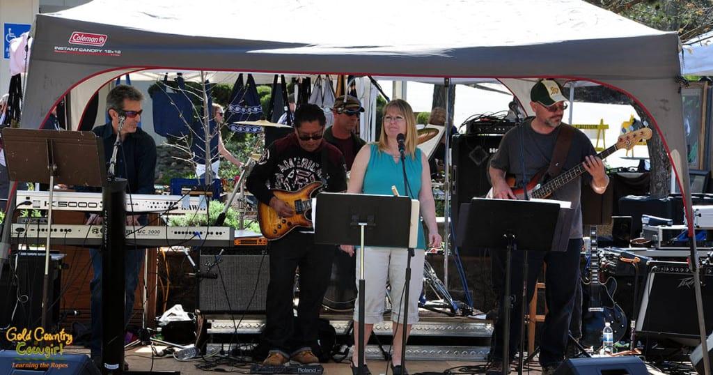 Live Entertainment at Dandelion Days
