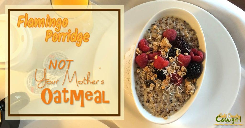 Flamingo Porridge Hn