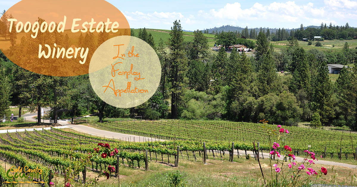 In May 2001, Toogood Estate Winery was established on a 40-acre parcel of rolling hills with microclimates perfect for the varietals hand selected for it. www.goldencountrycowgirl.com