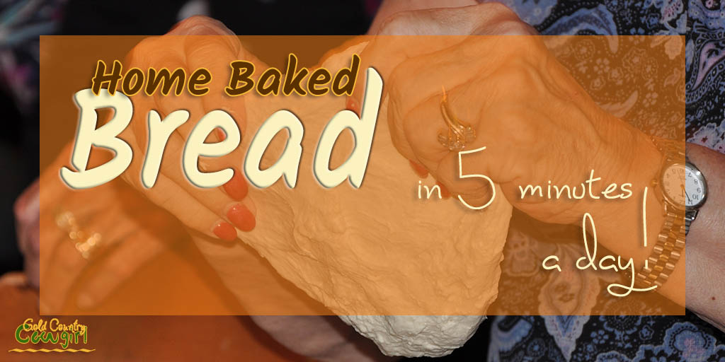 I love home baked bread but I don't like the kneading part. Can you believe you can make bread in 5 minutes a day without kneading?