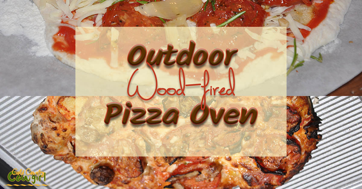 Outdoor Pizza Oven -- Fun and Practical