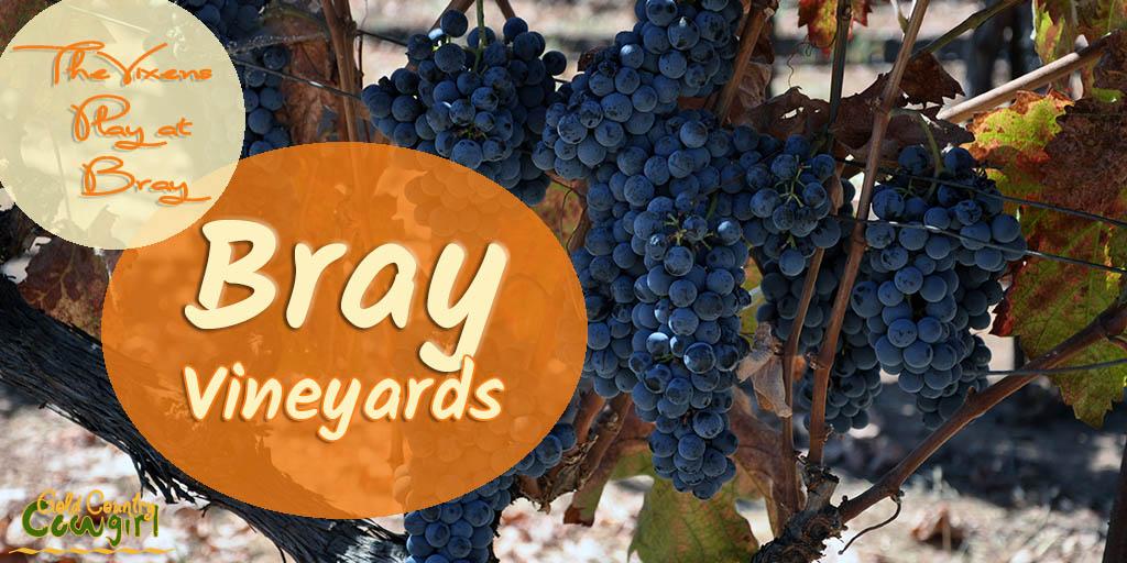 The Vixens Play at Bray: Bray Vineyards