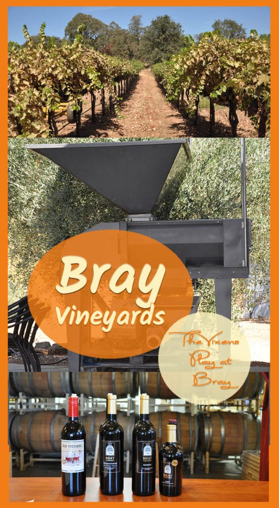 Vineyard, equipment, wine bottles with text overlay: Bray Vineyards The Vixens play at Bray