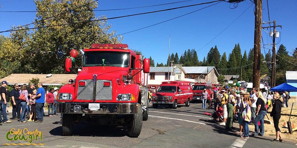 Fire trucks in Lumberjack Day Parade