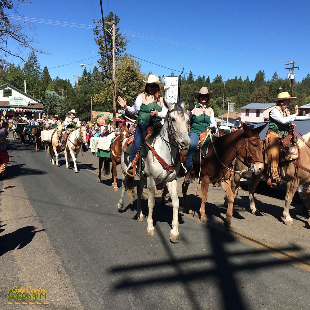 Pack train in Lumberjack Day parade