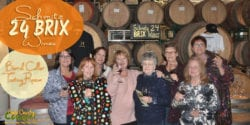 Schmitz 24 BRIX Wines Tasting Room is relatively new to the Shenandoah Valley. All their wines are highly rated with the Winemaker's Blend the most popular.