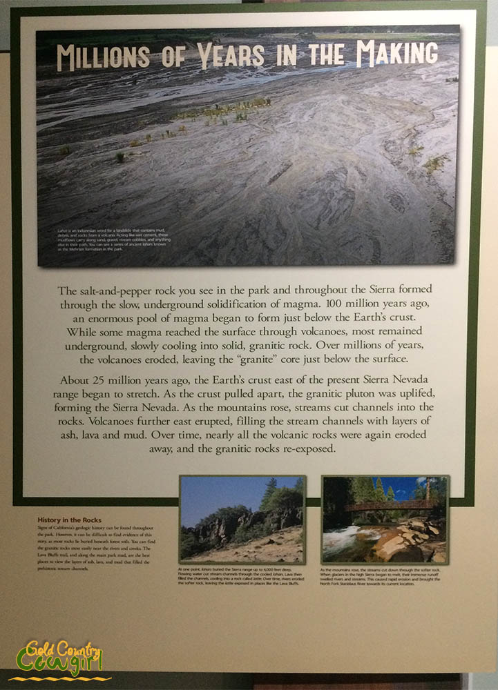 poster in visitor center at Calaveras Big Trees State Park