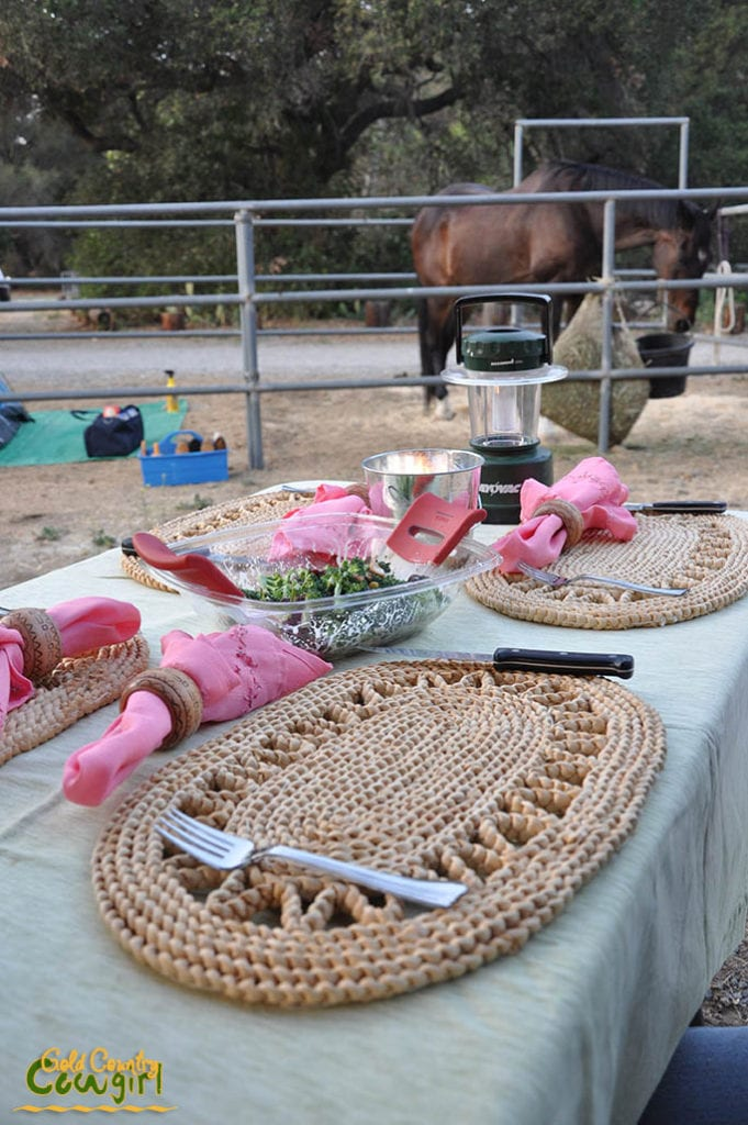 Beautiful table setting - Horse camping, O'Neill Regional Park, Orange County, CA