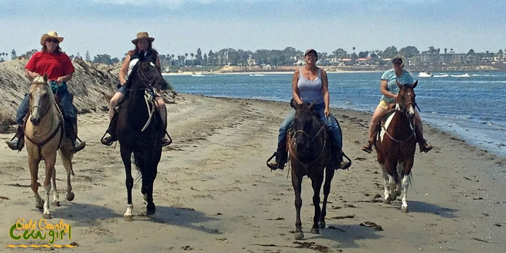 Horses on the beach, Fiesta Island, San Diego, CA