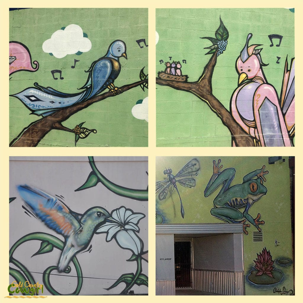 Sq sample of 4 murals of downtown Harlingen
