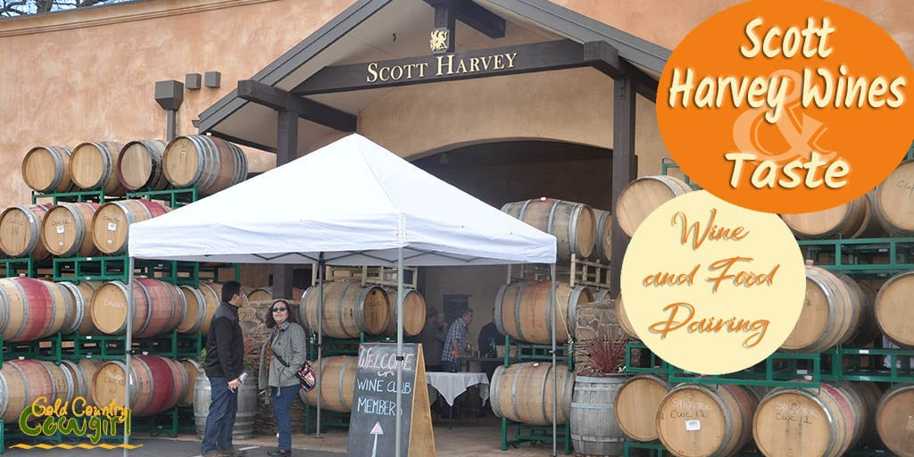 front of Scott Harvey Wines with lots of barrels and text overlay: Scott Harvey Wines & Taste Wine and Food Pairing