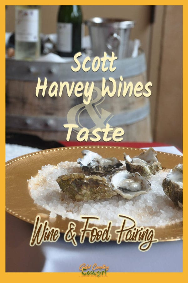 a plate of oysters with wine on a barrel in the background with text overlay: Scott Harvey Wines & Taste Wine & Food Pairing