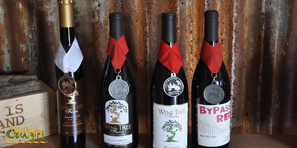 Some of the award winning wines at Wine Tree Farm