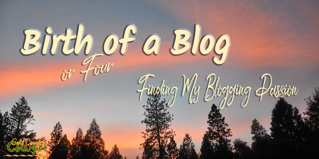 One year ago today I published my first post on Gold Country Cowgirl. I was not new to blogging. It just took a while to find my blogging passion.