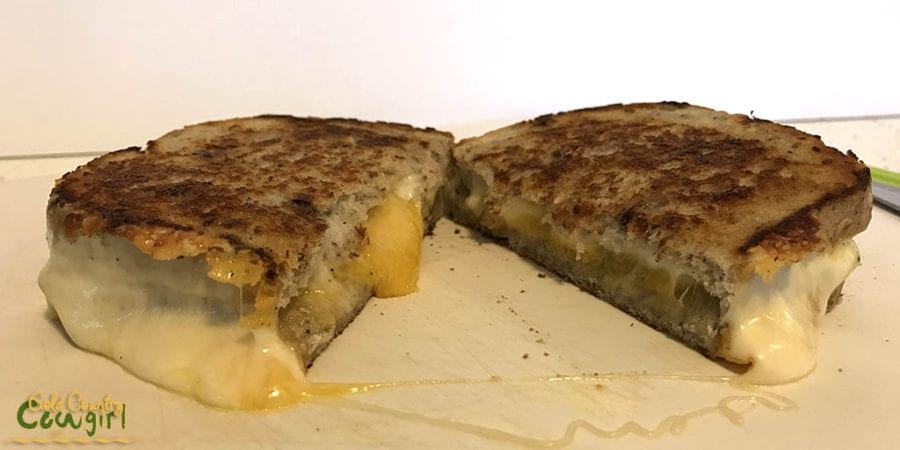 Ultimate grilled cheese cut