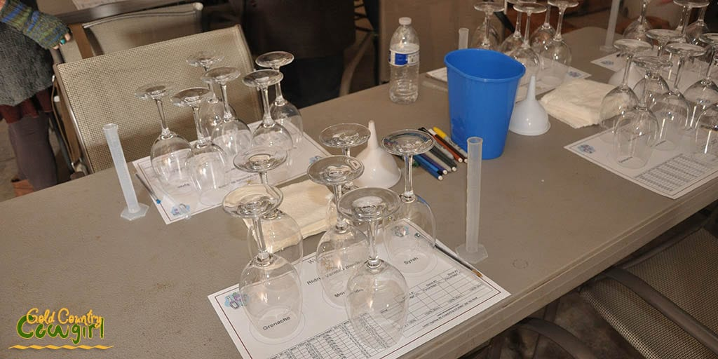 Wine blending class at Wine Tree Farm in Amador City