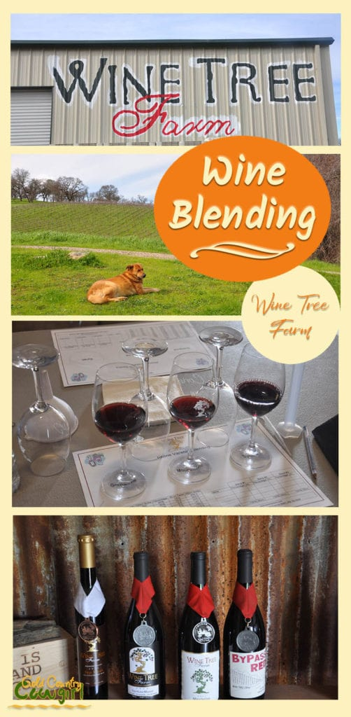 four photos from Wine Tree Farm of sign, vineyard, wine blending class and bottles with medals
