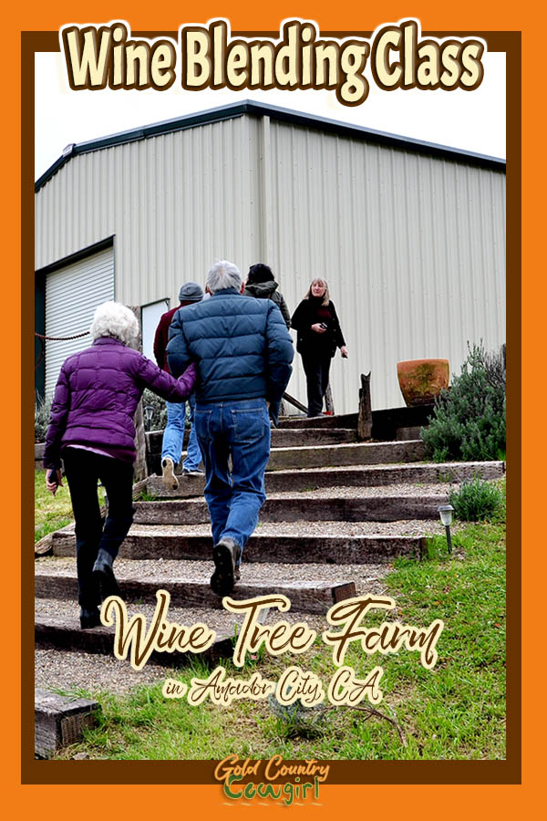 people walking up stairway towards tasting room with text overlay: Wine Blending Class Wine Tree Farm in Amador City, CA