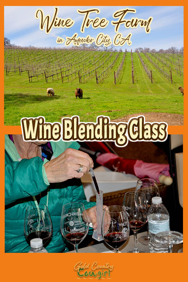 photo of vineyards and a photo of wine blending class with text overlay: Wine Tree Farm in Amador City, CA Wine Blending Class