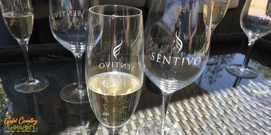 Sentivo Vineyards glasses