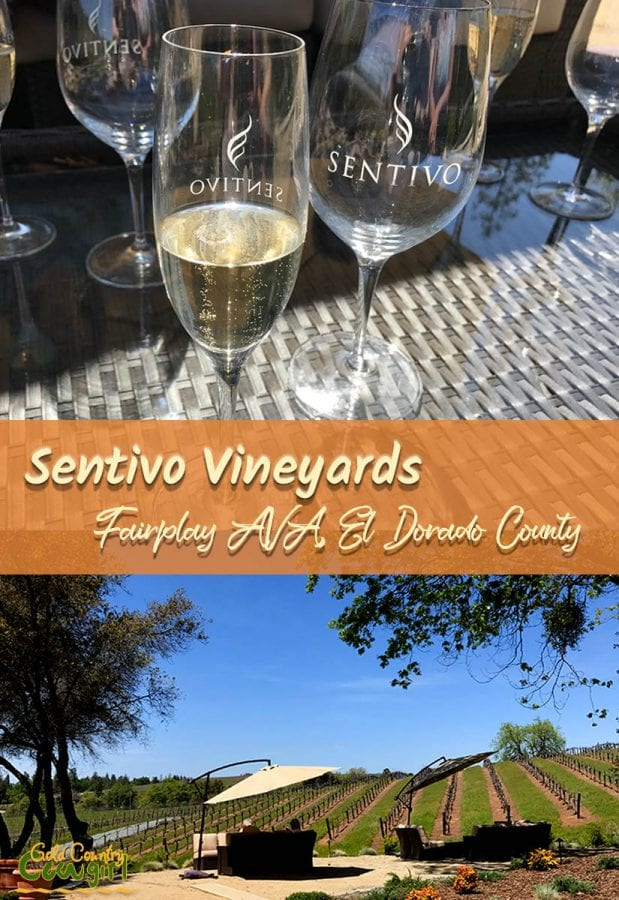 If you want to be treated like family when you go wine tasting then Sentivo Vineyards is where you want to be. Beautiful location, great wine and food.