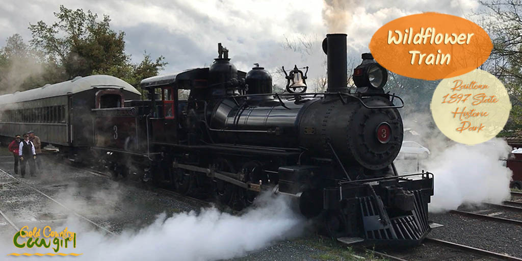 You can ride the train at Railtown 1897 State Historic Park every weekend April through October. The Wildflower Train is a special event in April.