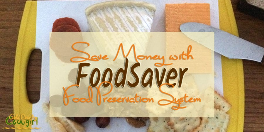 FoodSaver Review: My Favorite Money-Saving Appliance - Even as a single person, I still like to buy in bulk to save money. My FoodSaver review and how you can save money on groceries.