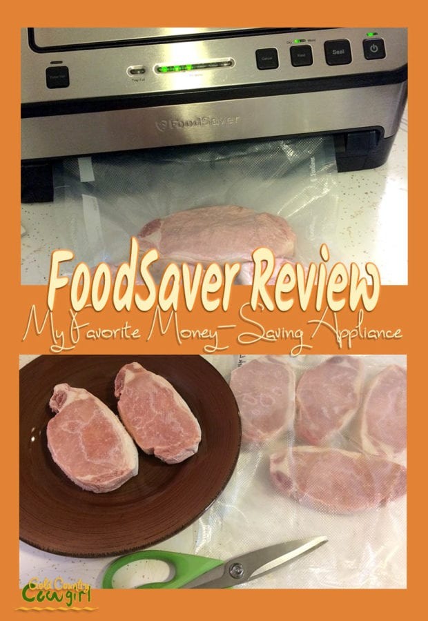 Even as a single person, I still like to buy in bulk to save money. Read my FoodSaver review and see how you can save money on groceries.