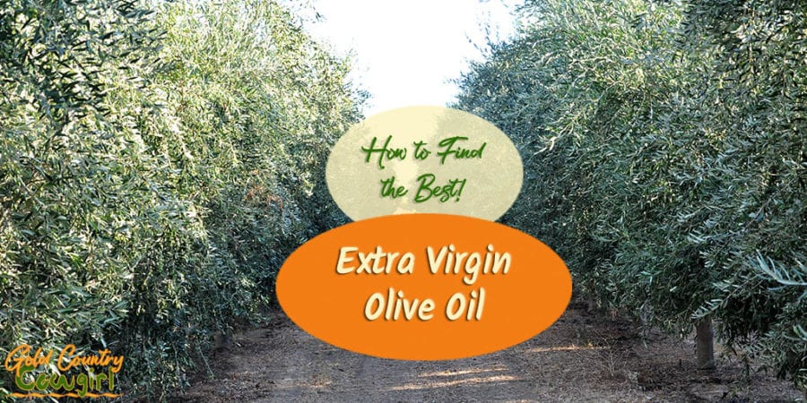 Do you know how to tell if you are purchasing a high-quality olive oil and if it is truly extra virgin? Australia and California make it easier.