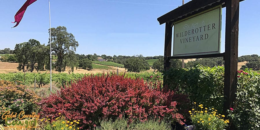 View from the front patio entry at Wilderotter Vineyard