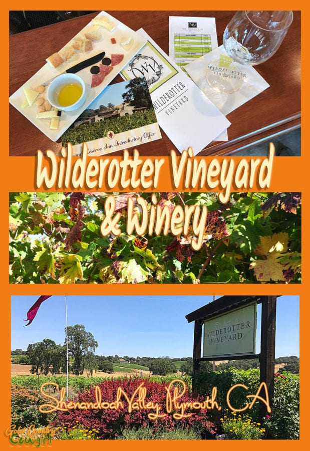 Jay Wilderotter is one of the lucky ones. He found his passion a long time ago and lives it every day. Jay and Maggie Wilderotter, owners of Wilderotter Vineyard, want you to feel as welcome in their tasting room as you would in their home.