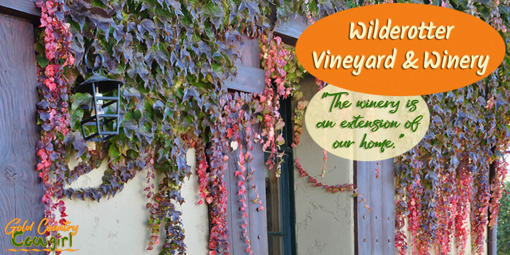 Wilderotter Vineyard and Winery: From Small Beginnings