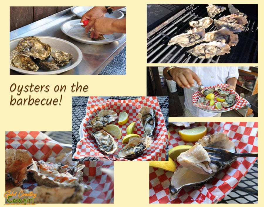 Oysters and Smoked Meats at Jamison's Ale House