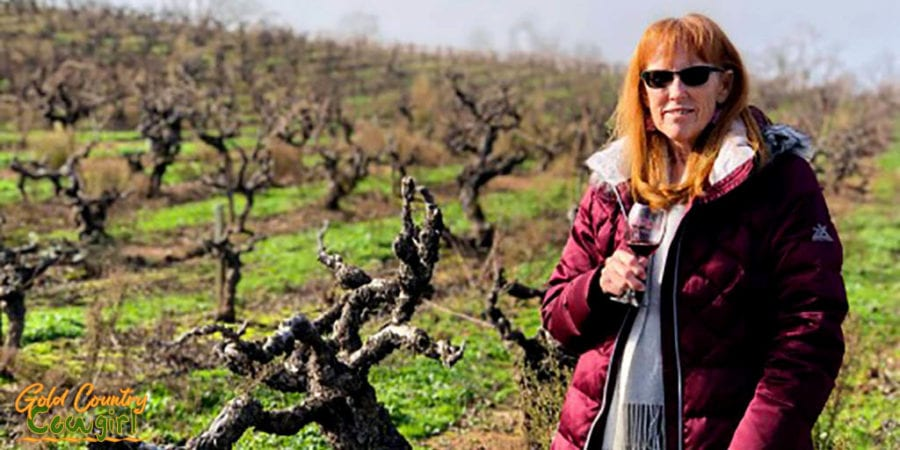 I had to have a picture of me among these ancient Zinfandel vines