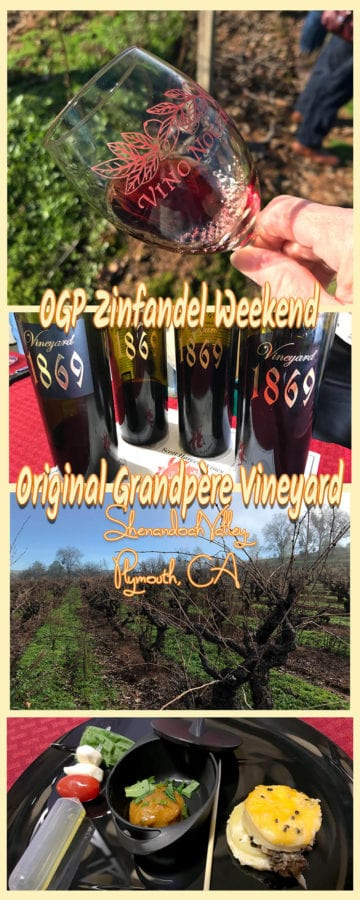 I've been researching Zinfandel for some time now, learning what is so special about old vine Zinfandel. When I saw an opportunity to visit the oldest documented Zinfandel vineyard in the Americas, planted in the 1860s, I knew I had to go. Shenandoah Valley, Plymouth, CA.