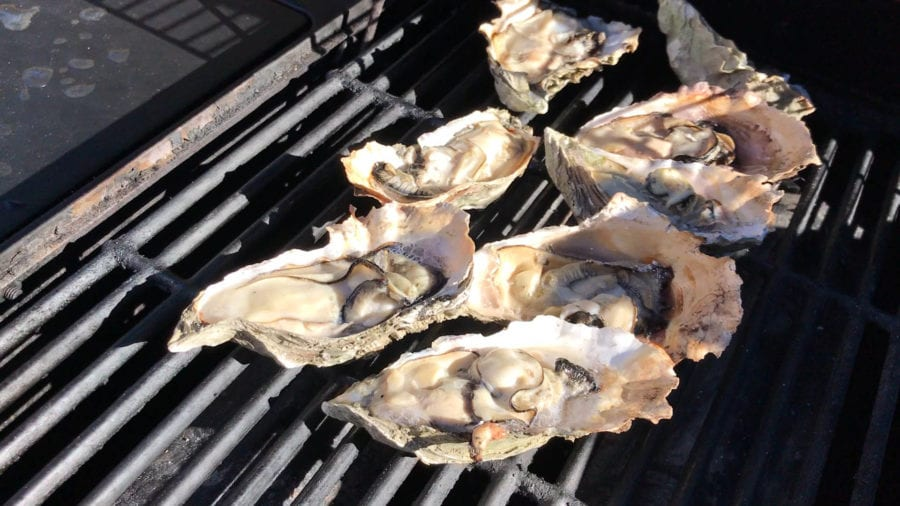Oysters on the barbecue at Jamison's Ale House in Amador City