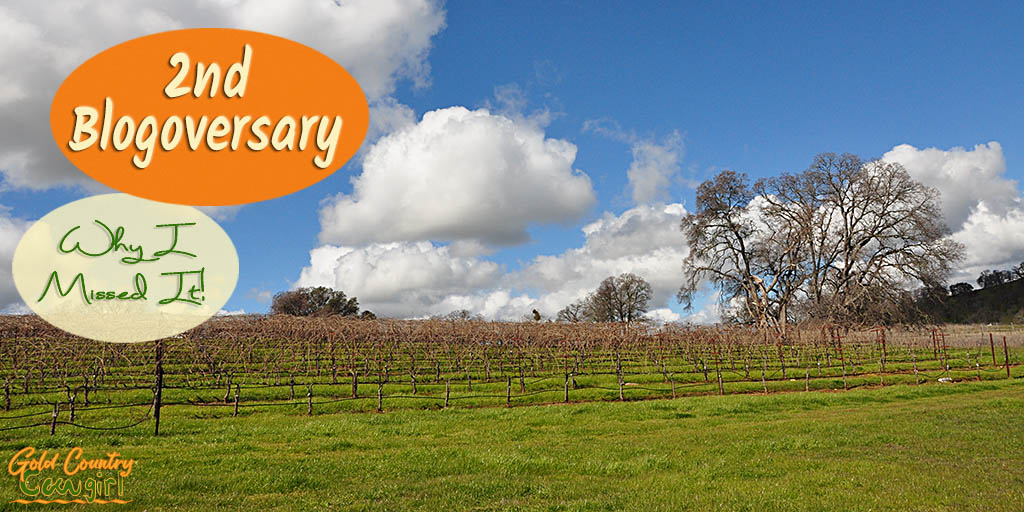 March 7thwas the 2ndanniversary of the Gold Country Cowgirl blog. I had intended to do a special post and a giveaway for the blog anniversary. Check out this post to see the wine events and more that kept this from happening.