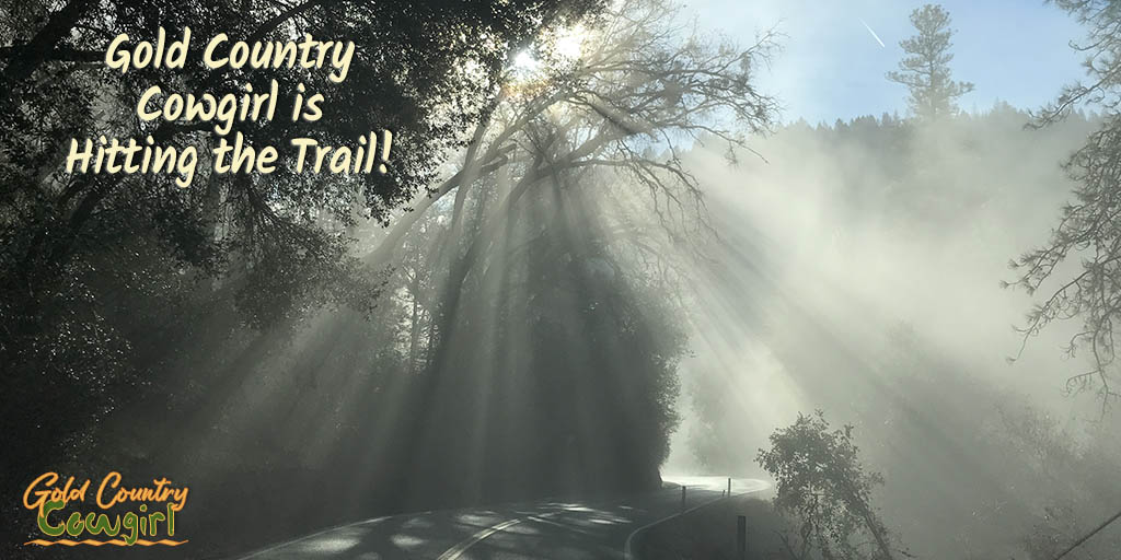 As much as I have enjoyed learning the ropes of living in Gold Country, this Gold Country Cowgirl will be hitting the trail soon. Will I take up a life of living full time on the road in a travel trailer? Read about my life-changing decision.