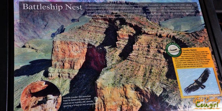 Condor Battleship Nest sign