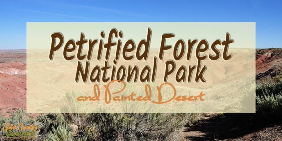 Petrified Forest National Park in Arizona, #6 on my list of most viewed posts of 2019