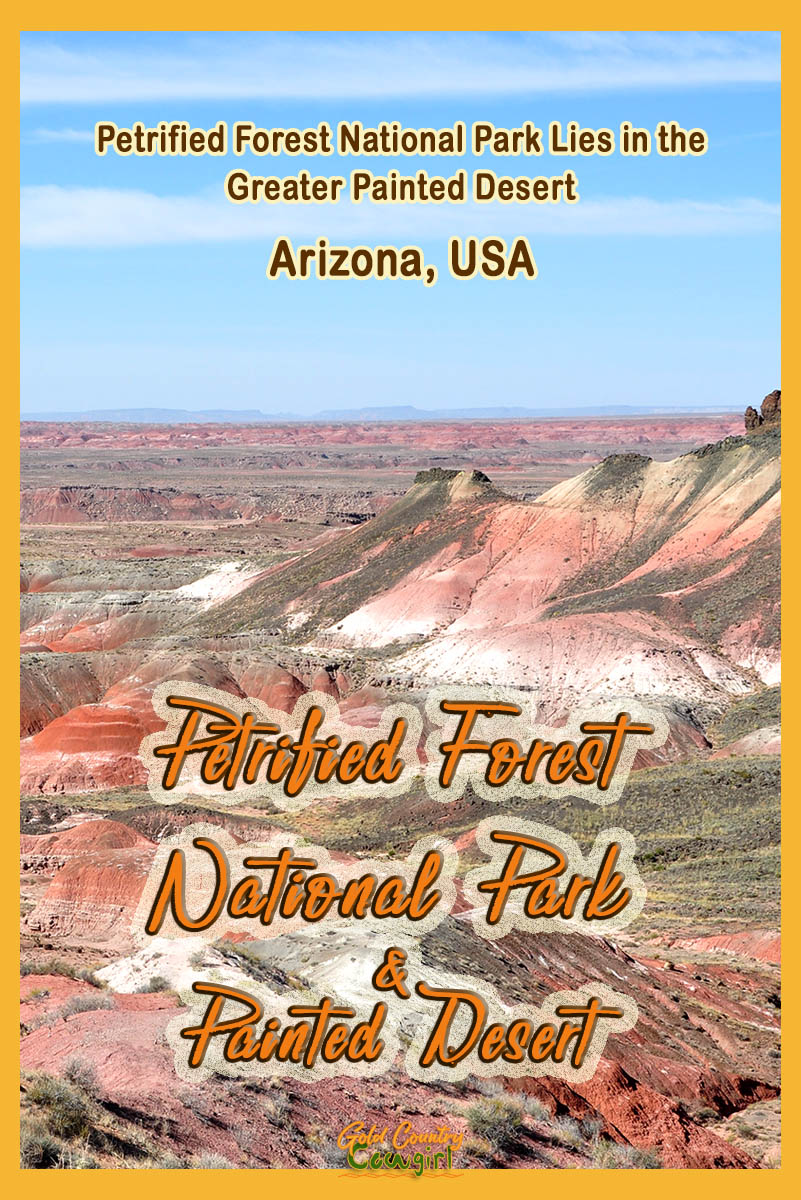 Petrified Forest National Park in Arizona, lies at the heart of the Painted Desert and is one of the largest concentrations of petrified wood in the world. #travel #AZ #arizona #nationalparks #petrifiedforest