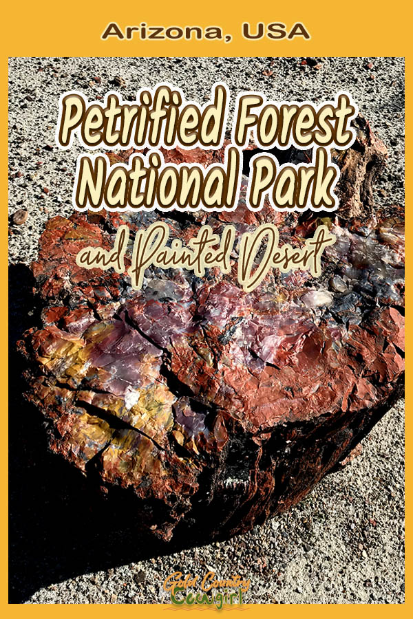 Petrified wood with text overlay: Arizona, USA Petrified Forest National Park and Painted Desert