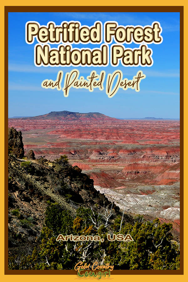 Landscape view of the Painted Desert with text overlay: Petrified Forest National Park and Painted Desert Arizona, USA