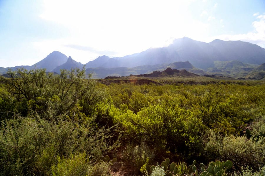 Bucket list worthy things to do in Texas - Hiking in Big Bend National Park Texas