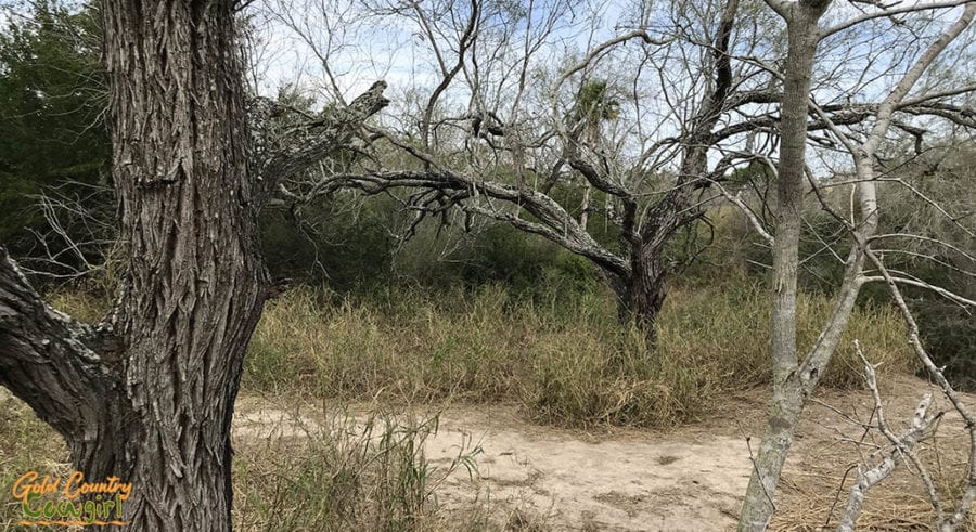 Harlingen Parks & Rec geocache location