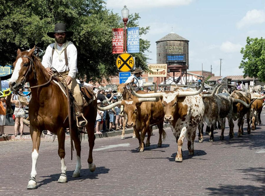 Bucket list worthy things to do in Texas - Fort Worth Stockyards