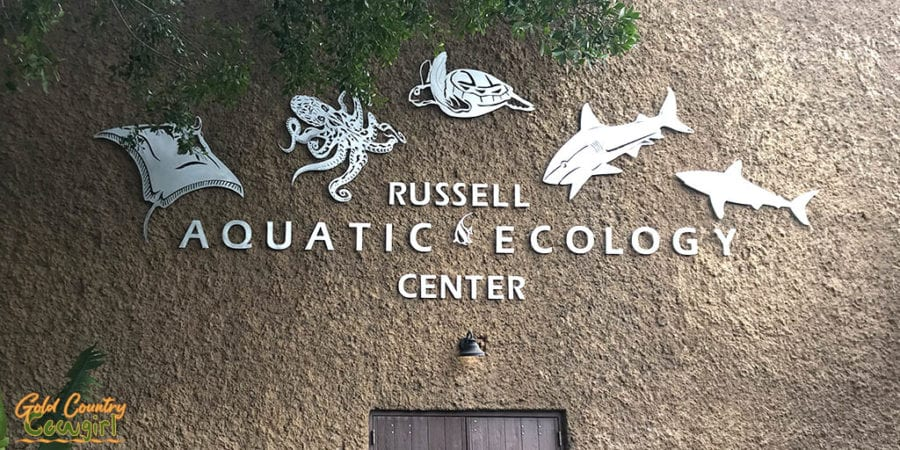 Russell Aquatic & Ecology Center at Gladys Porter Zoo in Brownsville, TX